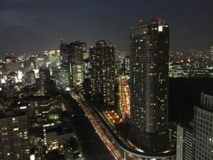 TokyoManzara2