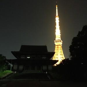 TokyoManzara1
