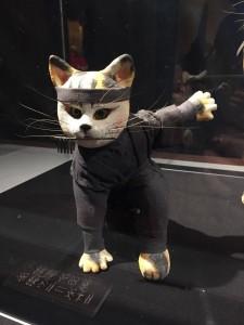Kedi 4