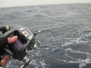 Tekne balıkçılığı